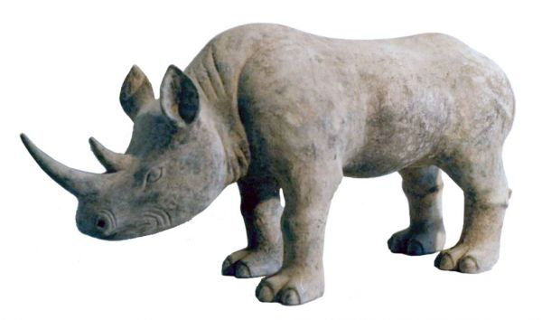 Han Rhino After2