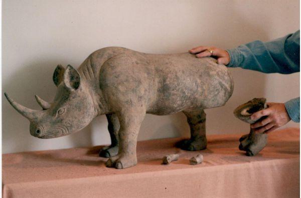 Han Rhino before